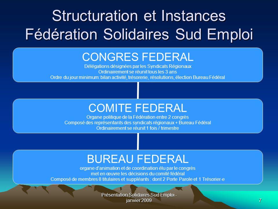 Structuration et Instances Fédération Solidaires Sud Emploi