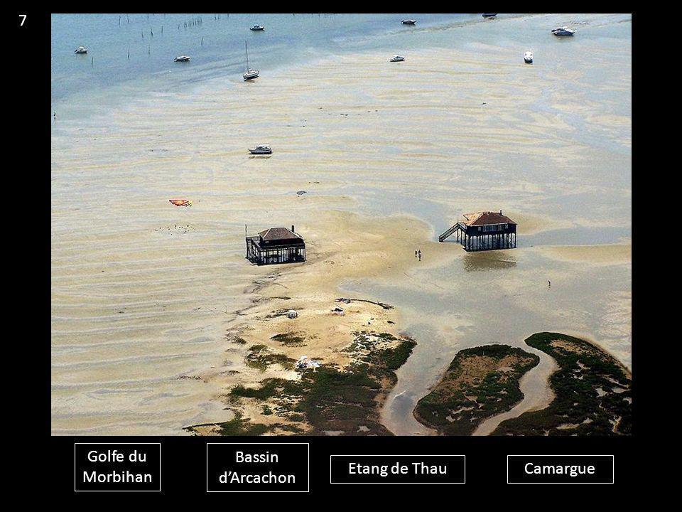 7 Golfe du Morbihan Bassin d'Arcachon Etang de Thau Camargue