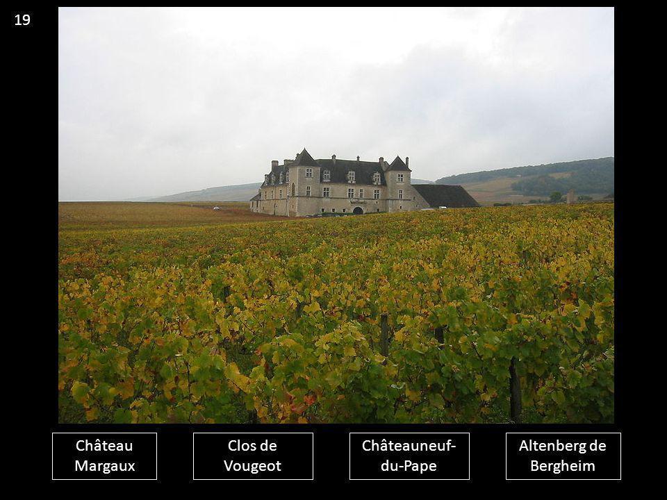 19 Château Margaux Clos de Vougeot Châteauneuf-du-Pape Altenberg de Bergheim