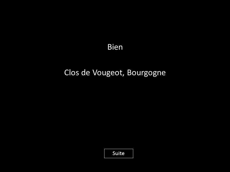 Bien Clos de Vougeot, Bourgogne