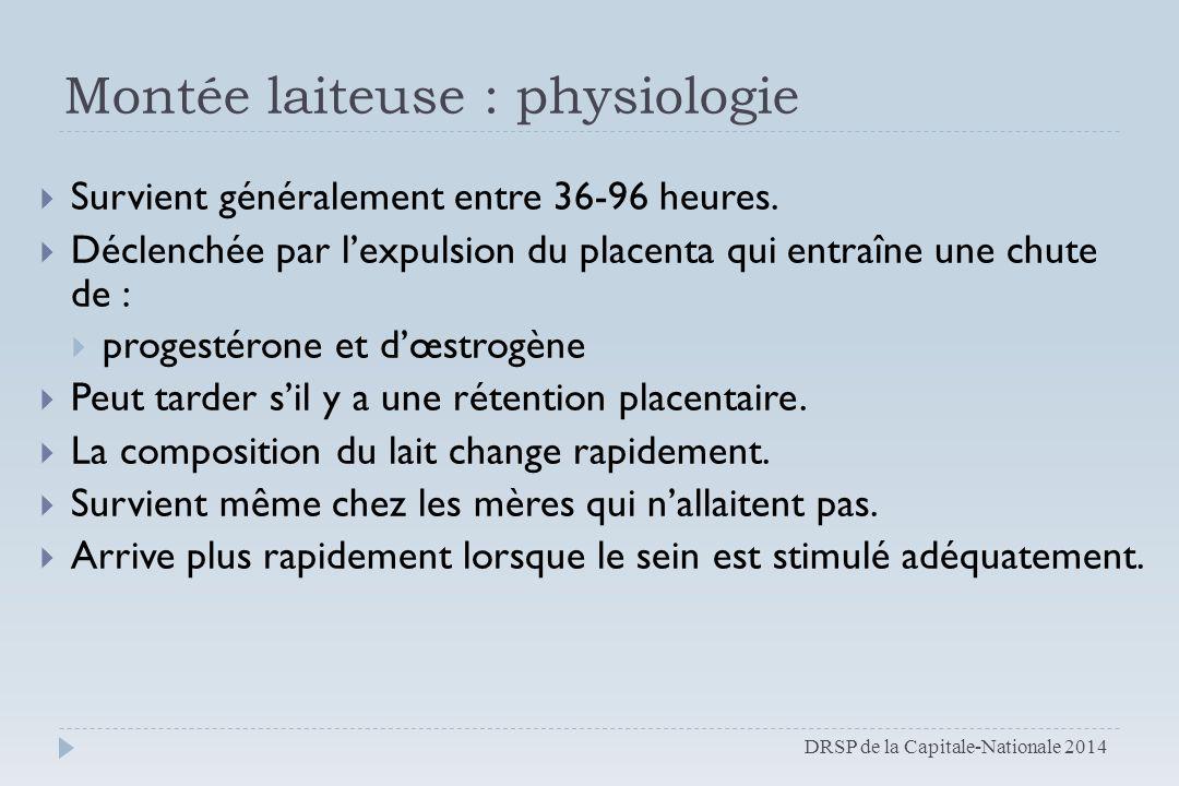 Montée laiteuse : physiologie