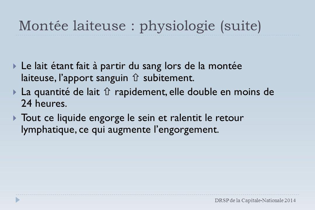 Montée laiteuse : physiologie (suite)