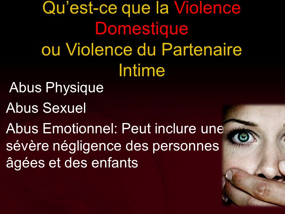 Qu'est-ce que la Violence Domestique ou Violence du Partenaire Intime
