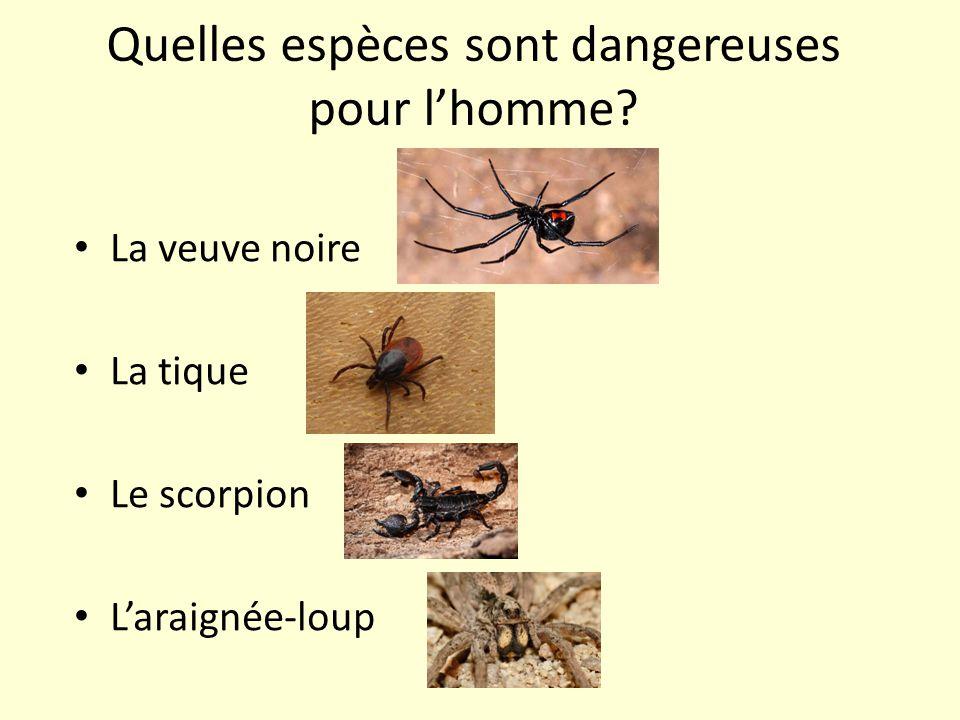 Quelles espèces sont dangereuses pour l'homme