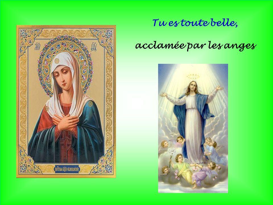 Tu es toute belle, acclamée par les anges