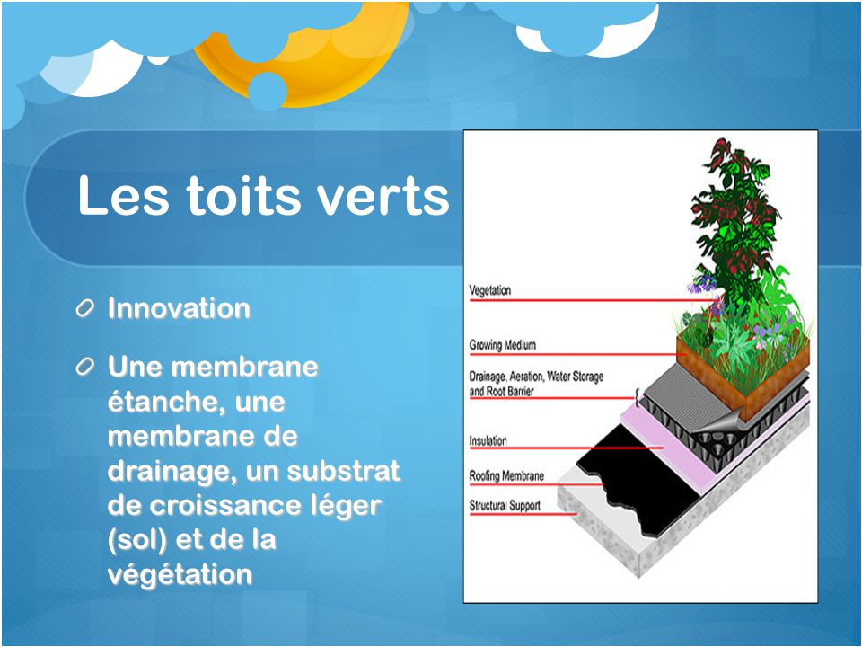 Les toits verts Innovation