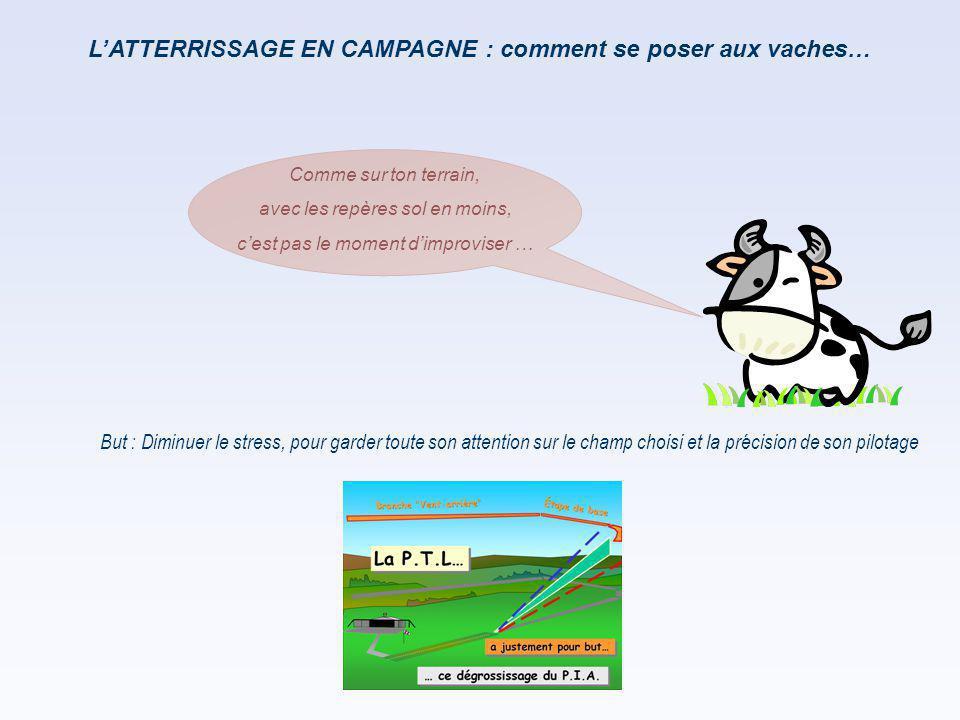 L'ATTERRISSAGE EN CAMPAGNE : comment se poser aux vaches…