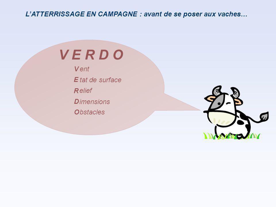 V E R D O L'ATTERRISSAGE EN CAMPAGNE : avant de se poser aux vaches… V