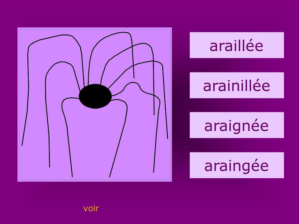 9. araignée araillée arainillée araignée araingée voir