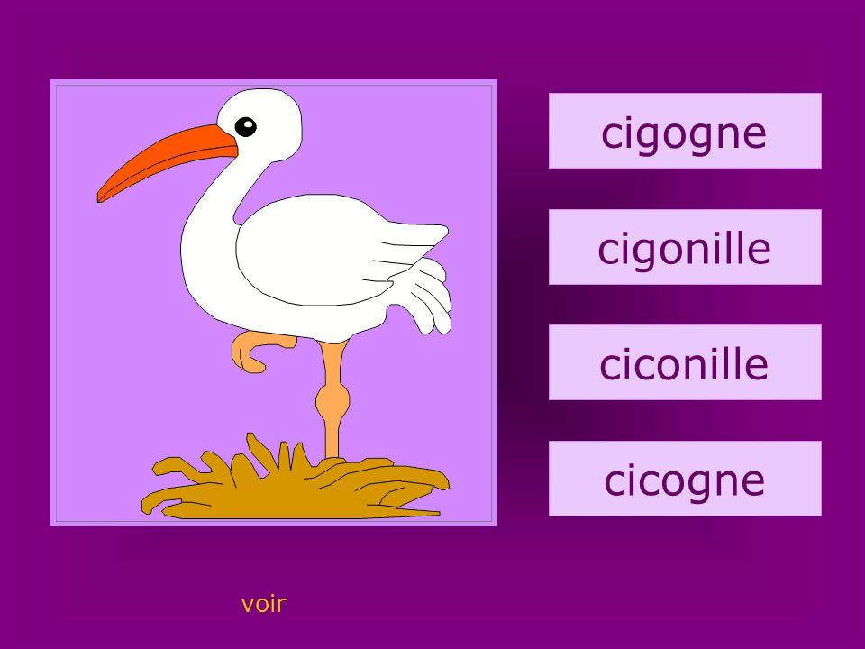 14. cigogne cigogne cigonille ciconille cicogne voir
