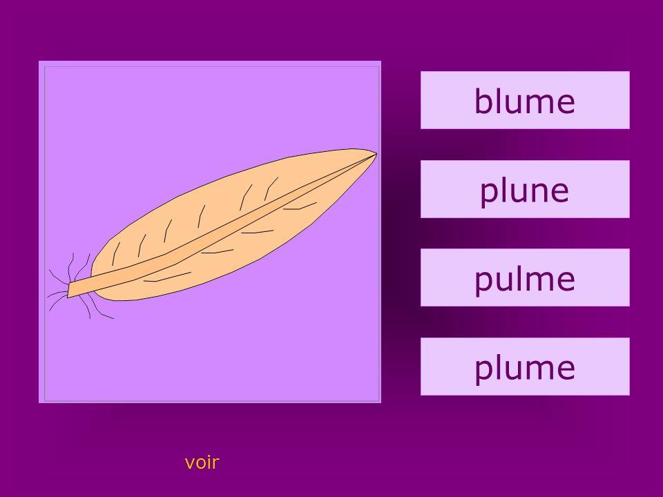 28. plume blume plune pulme plume voir