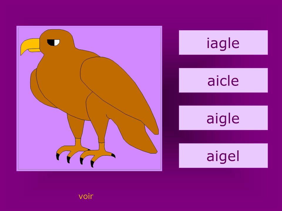 3. aigle iagle aicle aigle aigel voir