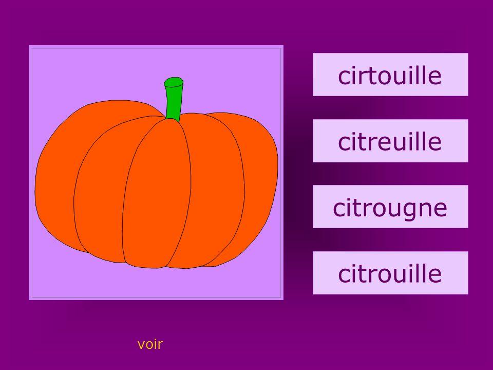 4. citrouille cirtouille citreuille citrougne citrouille voir