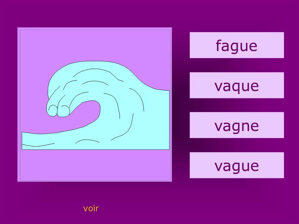 66. vague fague vaque vagne vague voir
