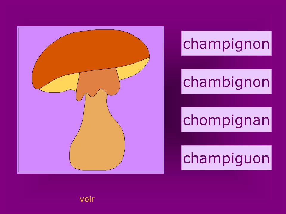 73. champignon champignon chambignon chompignan champiguon voir
