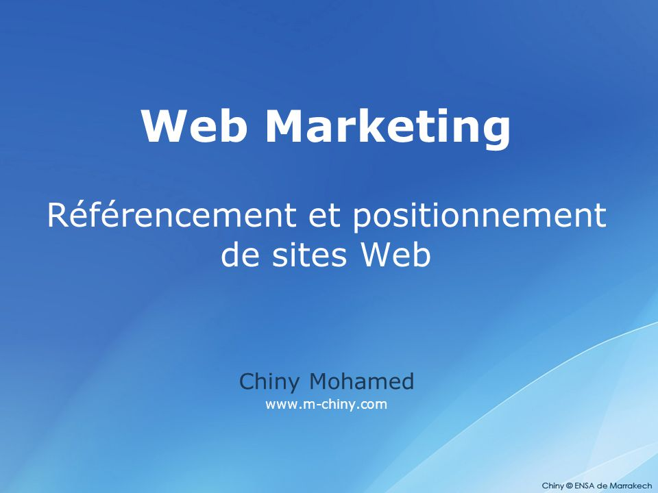 Web Marketing Référencement et positionnement de sites Web