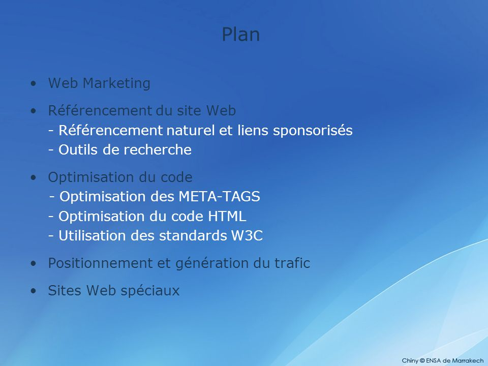 Plan Web Marketing Référencement du site Web
