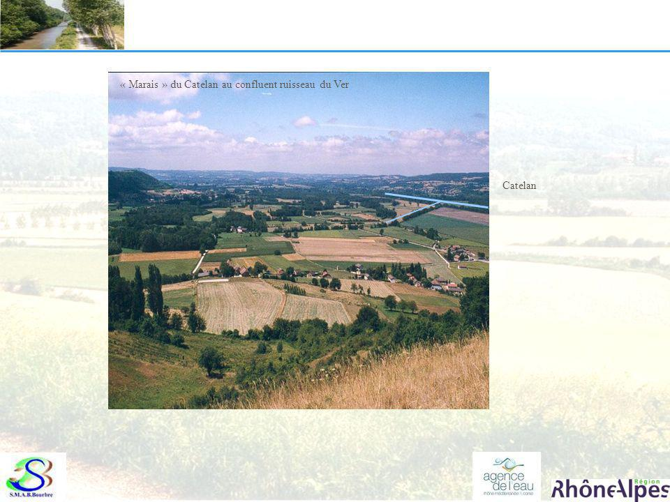 « Marais » du Catelan au confluent ruisseau du Ver