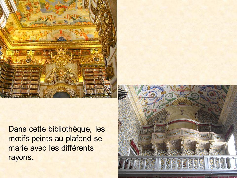 Dans cette bibliothèque, les motifs peints au plafond se marie avec les différents rayons.
