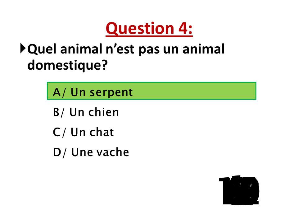 Question 4: Quel animal n'est pas un animal domestique A/ Un serpent. B/ Un chien. C/ Un chat. D/ Une vache.