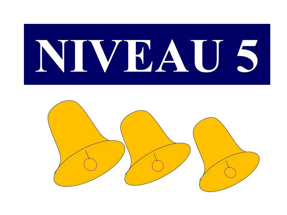 NIVEAU 5