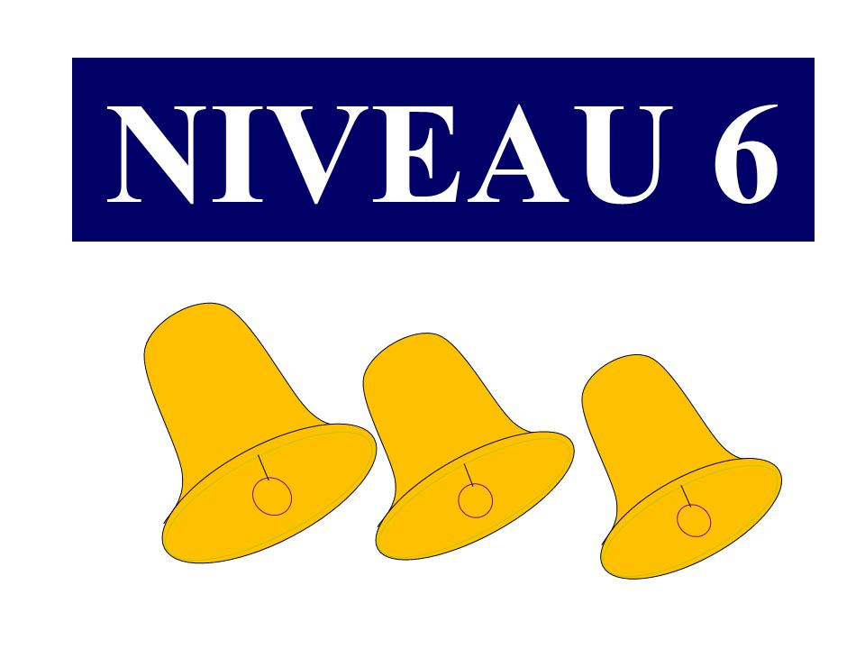 NIVEAU 6