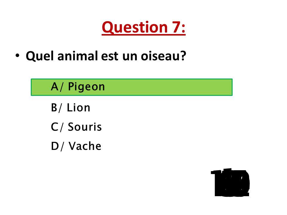 Question 7: Quel animal est un oiseau A/ Pigeon. B/ Lion. C/ Souris. La question 5 a 3 reponses possibles.