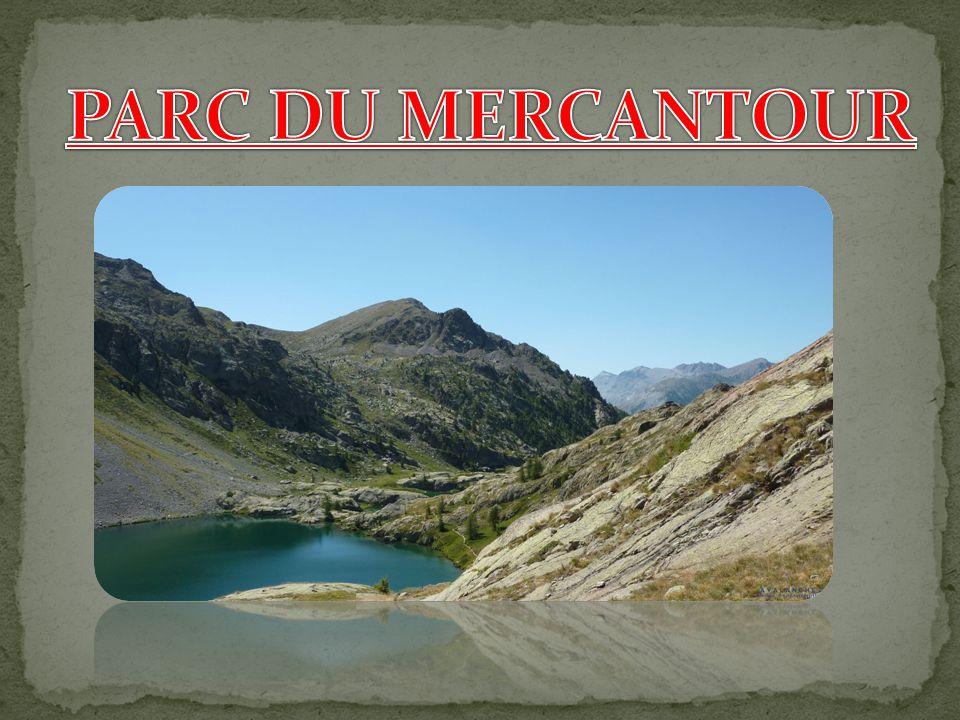 PARC DU MERCANTOUR