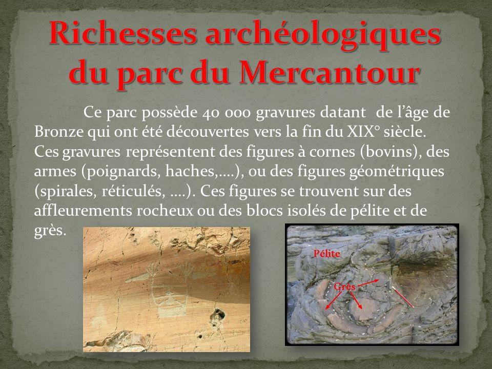 Richesses archéologiques du parc du Mercantour