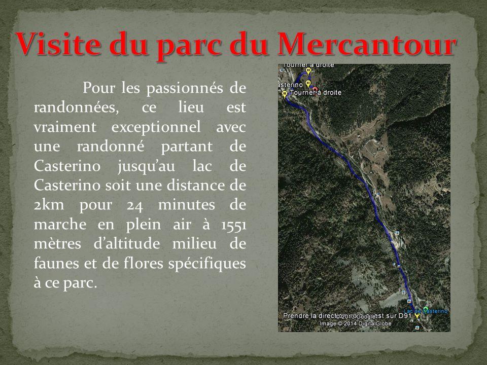 Visite du parc du Mercantour