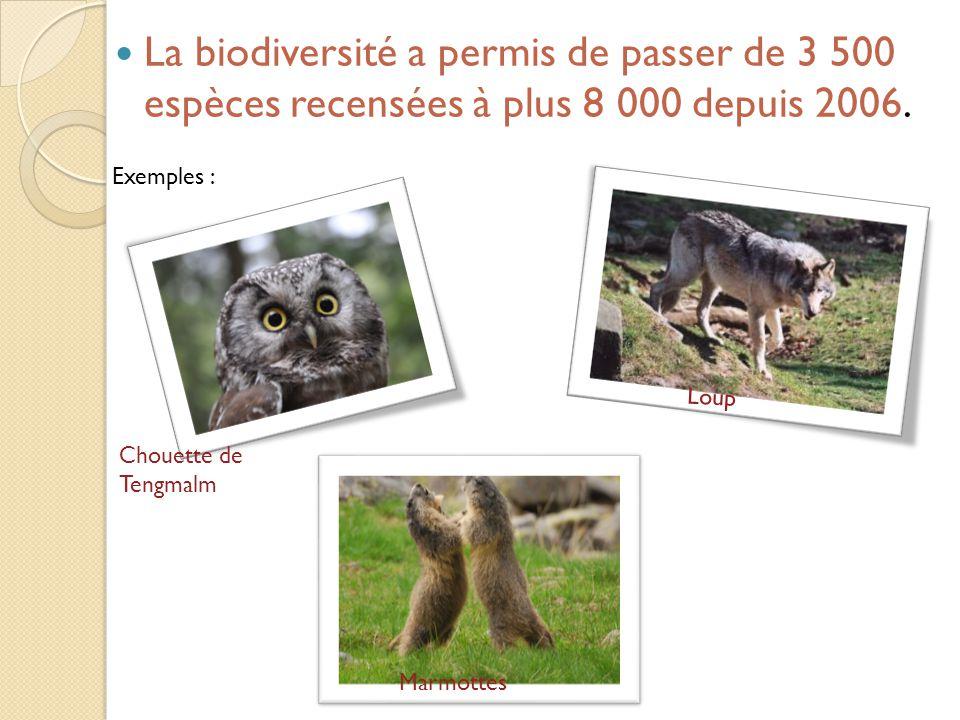 La biodiversité a permis de passer de 3 500 espèces recensées à plus 8 000 depuis 2006.