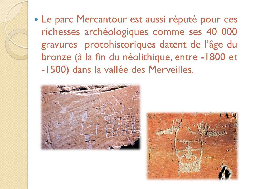 Le parc Mercantour est aussi réputé pour ces richesses archéologiques comme ses 40 000 gravures protohistoriques datent de l'âge du bronze (à la fin du néolithique, entre -1800 et -1500) dans la vallée des Merveilles.