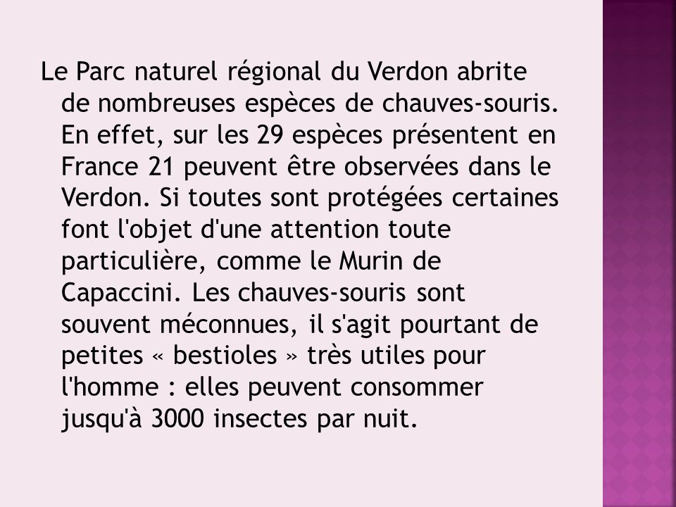 Le Parc naturel régional du Verdon abrite de nombreuses espèces de chauves-souris.