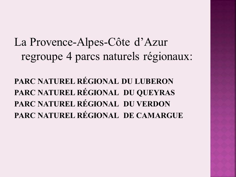 La Provence-Alpes-Côte d'Azur regroupe 4 parcs naturels régionaux:
