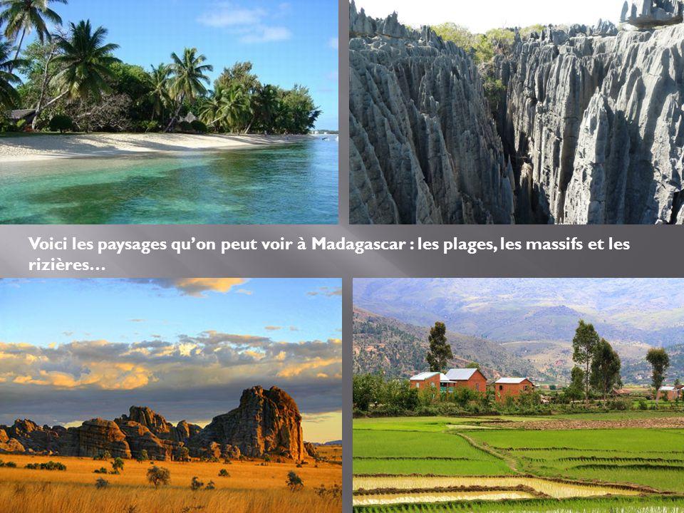 Voici les paysages qu'on peut voir à Madagascar : les plages, les massifs et les rizières…