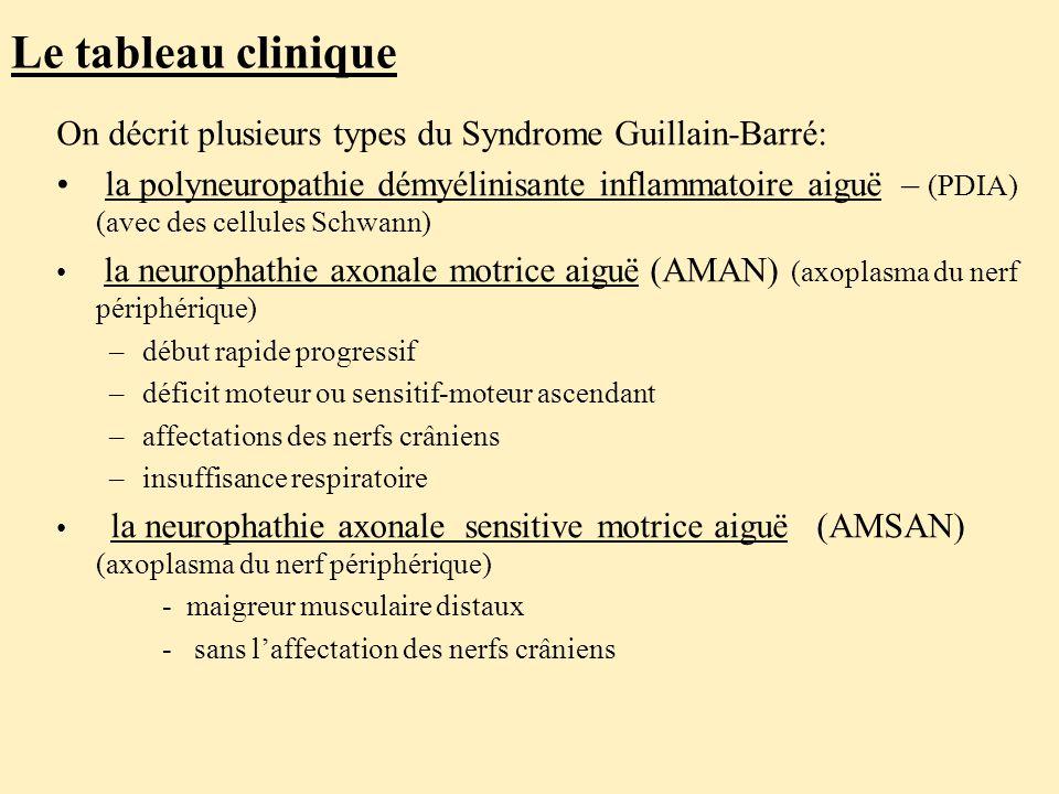Le tableau clinique On décrit plusieurs types du Syndrome Guillain-Barré: