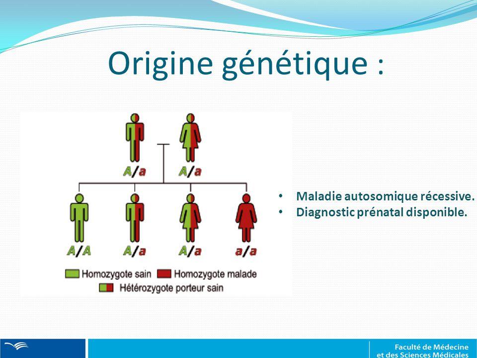 Origine génétique : Maladie autosomique récessive.