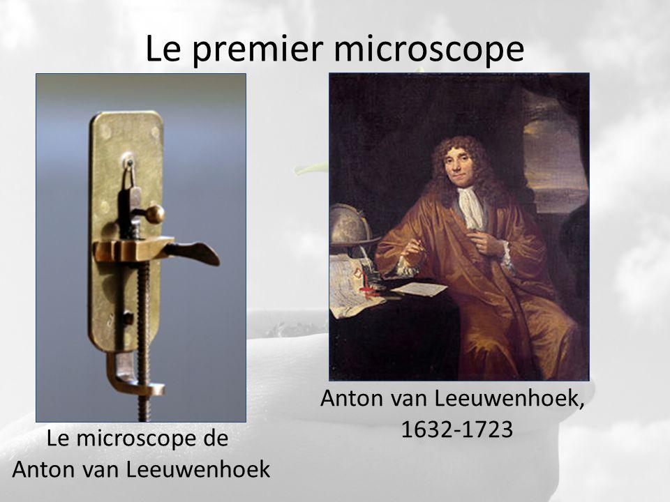Le premier microscope Anton van Leeuwenhoek, 1632-1723