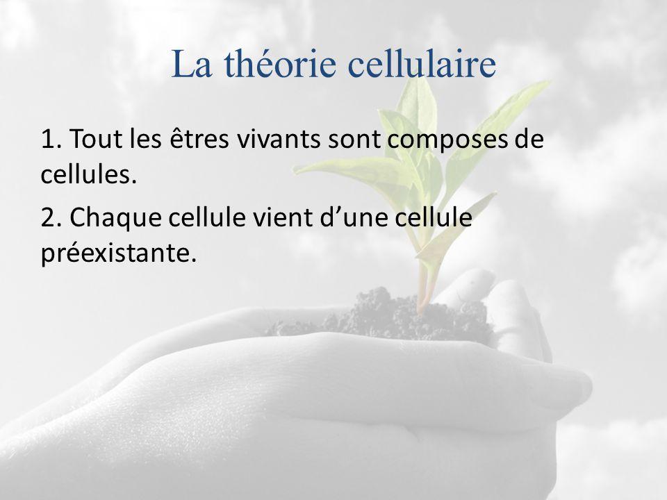La théorie cellulaire 1. Tout les êtres vivants sont composes de cellules.