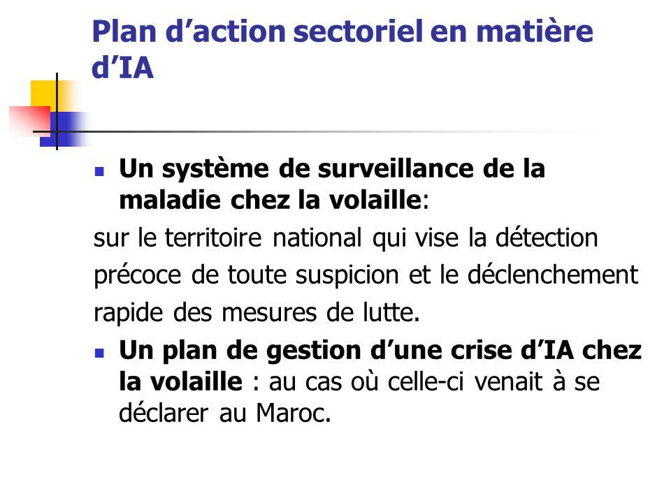 Plan d'action sectoriel en matière d'IA