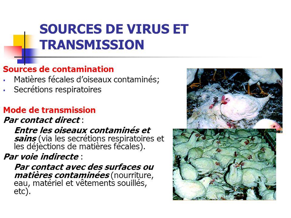 SOURCES DE VIRUS ET TRANSMISSION