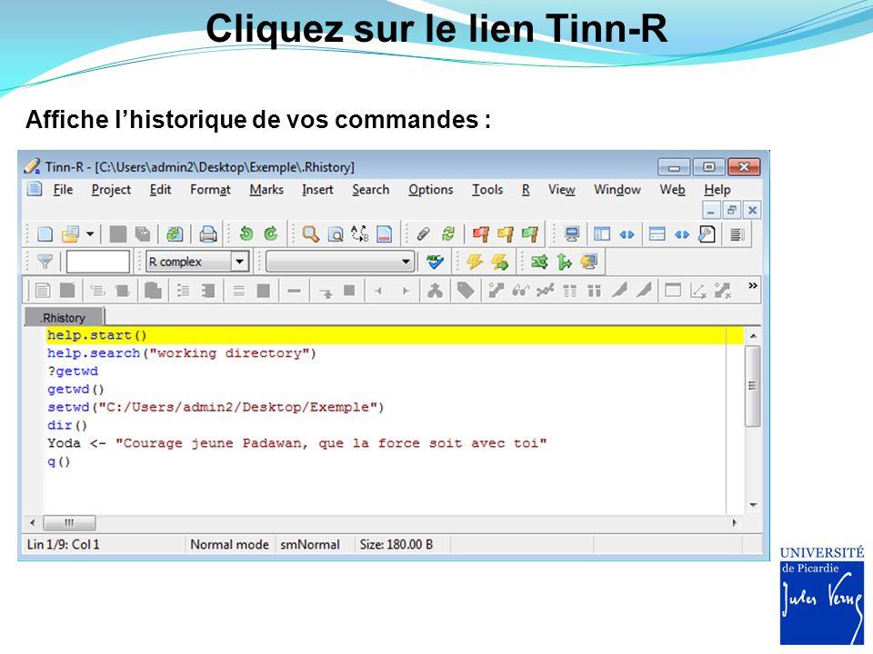 Cliquez sur le lien Tinn-R