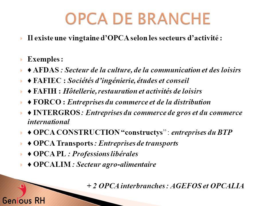 OPCA DE BRANCHE Il existe une vingtaine d'OPCA selon les secteurs d'activité : Exemples :