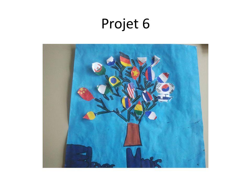 Projet 6
