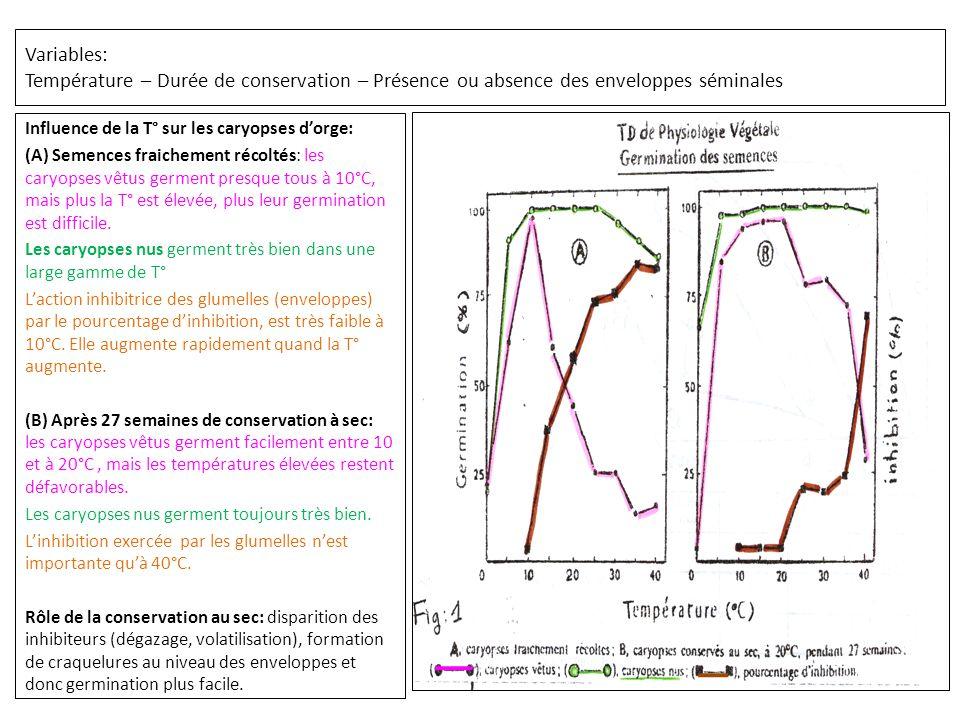Variables: Température – Durée de conservation – Présence ou absence des enveloppes séminales