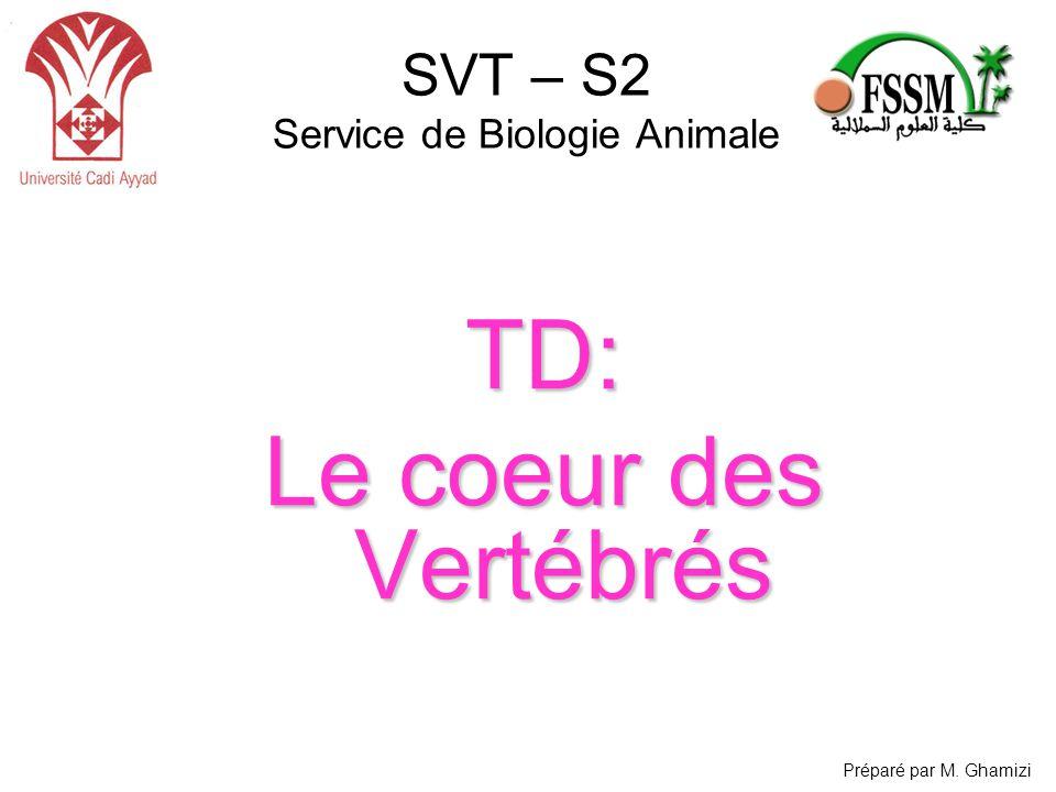 SVT – S2 Service de Biologie Animale