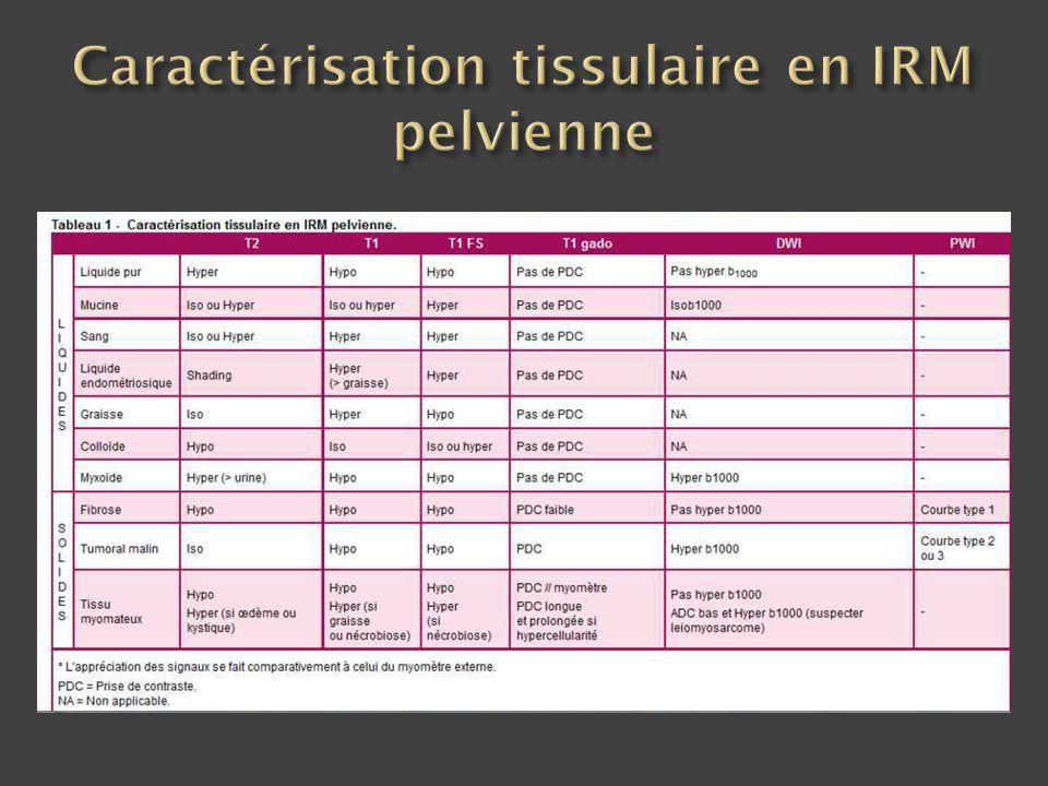 Caractérisation tissulaire en IRM pelvienne