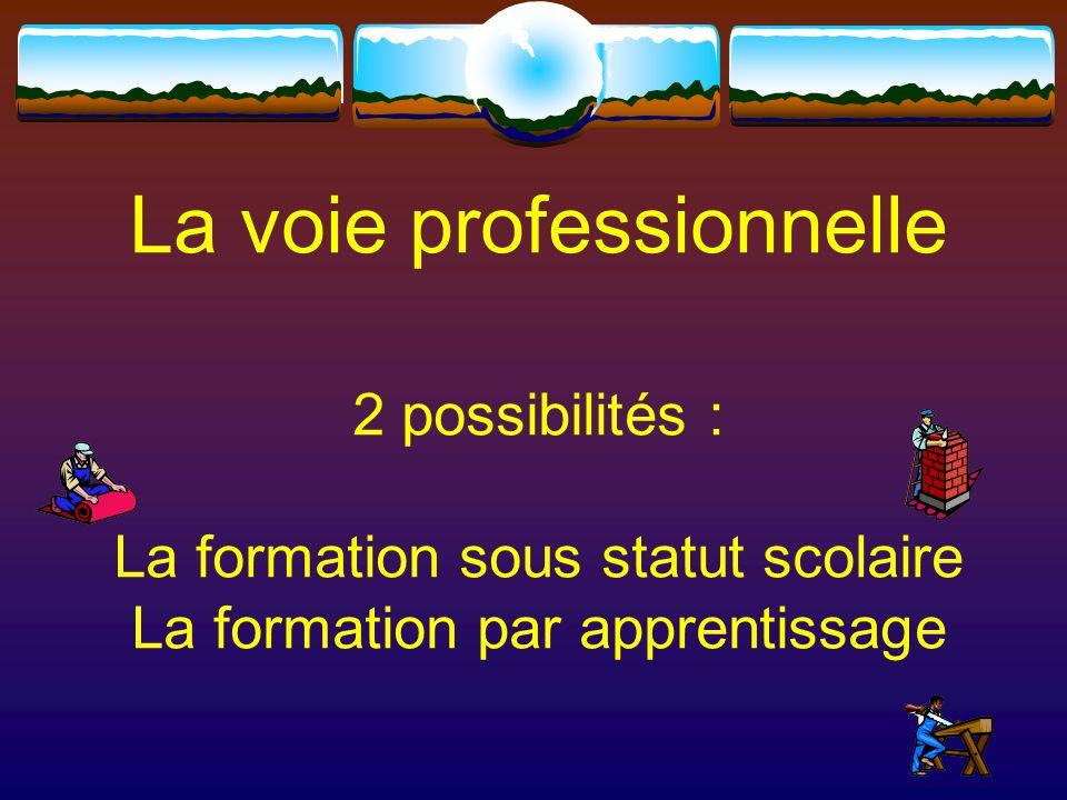 2 possibilités : La voie professionnelle