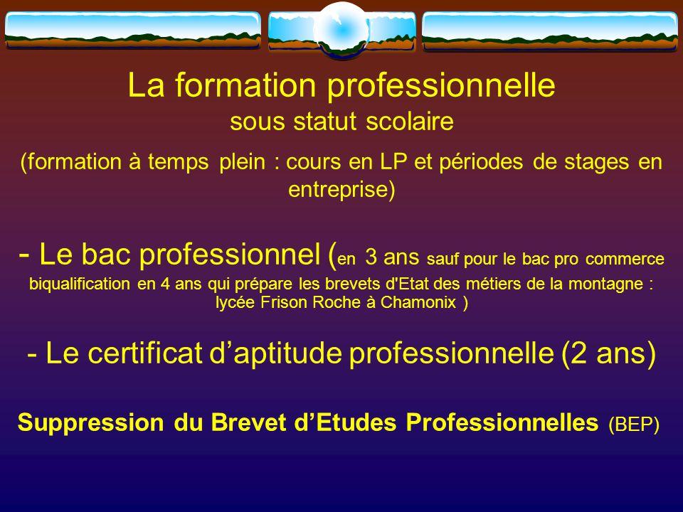La formation professionnelle
