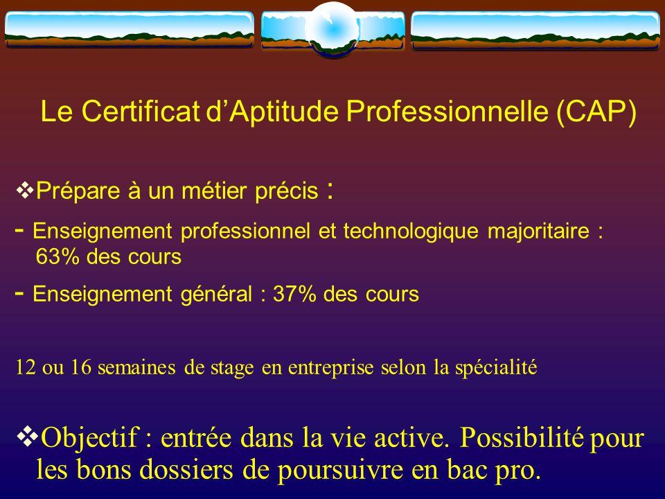 Le Certificat d'Aptitude Professionnelle (CAP)